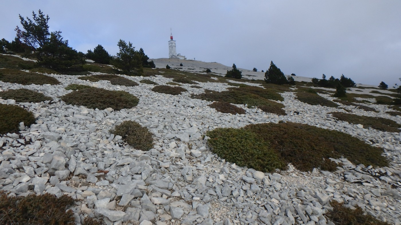 27 -_pierrier_Ventoux